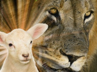 lion-lamb-loon-watchman-blog