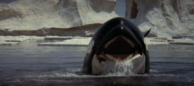 720full-orca%25253A-the-killer-whale-screenshot