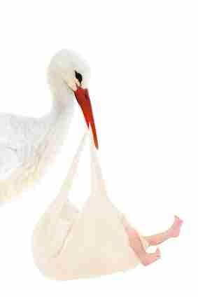 Storch mit Baby im Leinenbeutel