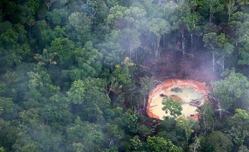 Devastación de selva venezolana por mineros ilegales brasileños. Foto lapatilla.com
