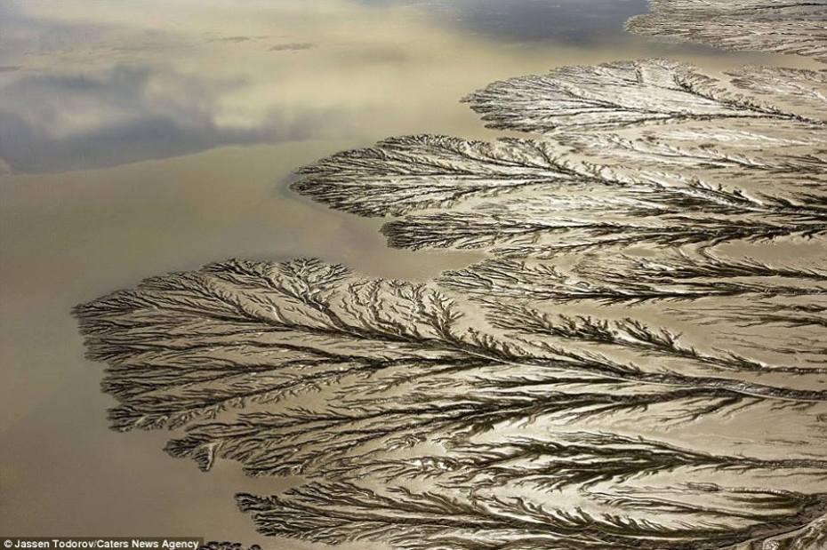 La nature incroyable Colorado-river-6.jpg?zoom=1
