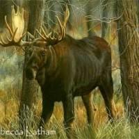 Bull Moose Painting