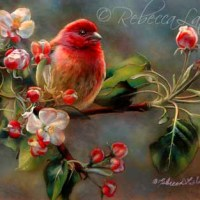 Finch & Blossoms Miniature Painting - Watercolor