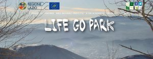LifeGoPark 2