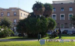 piazza-prefettura-lavori-giardino-verde-erba