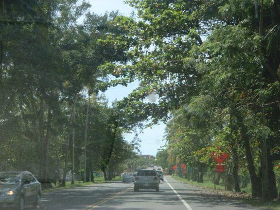 Puerto Rican roads