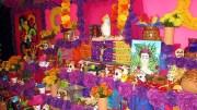 Dia de los Muertos Mexican Cultural Ctr. Nov. 2, 2017 (61)
