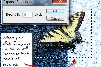 Photoshop – Increase and Decrease the size of your Selection