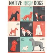 Dogs-Of-Ireland-Print-Jennifer-Farley