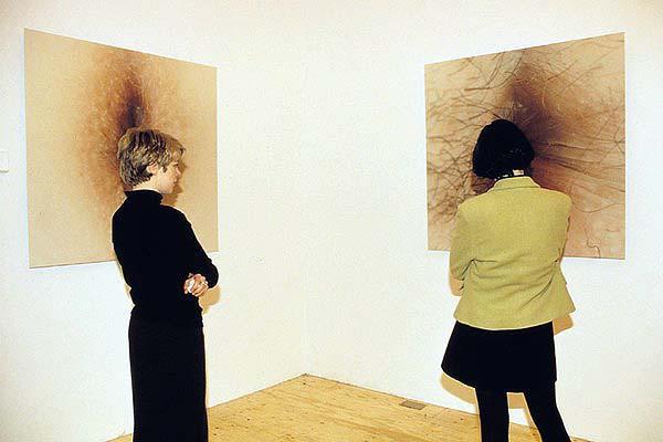 Art insolite : des trous du cul exposés au Portugal