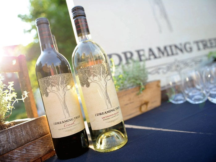 NEW YORK, NY - JUNE 20:  Atmosphere at  the Dreaming Tree Wines Summer Soiree on June 20, 2016 in New York City.  (Photo by Craig Barritt/Getty Images for Dreaming Tree Wines)