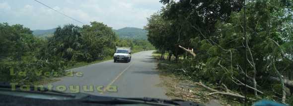 Sobre la carretera, cayeron varios árboles, los cuales fueron retirados por los propios pobladores, a fin de evitar algún accidente.