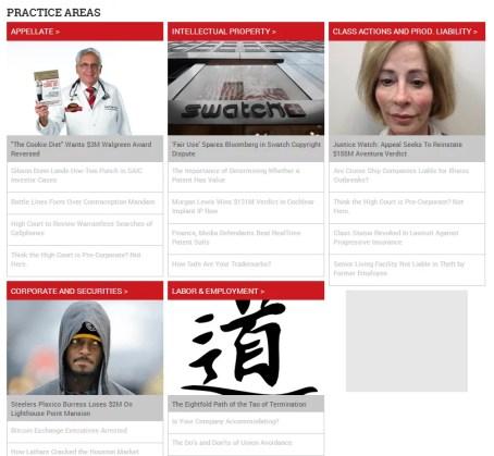 Law.com Screenshot Practice Areas II