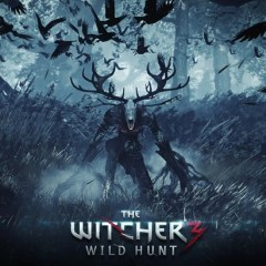 Look how bloody massive The Witcher 3:The Wild Hunt map is