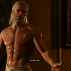 Sex matters in The Witcher 3