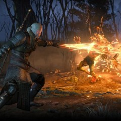 What will (and won't) carry over in The Witcher 3's New Game+