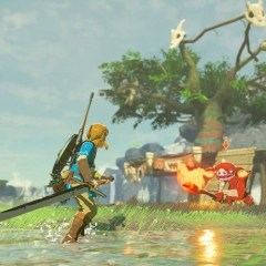 Link struggles to swing a sword in new Breath of the Wild gameplay