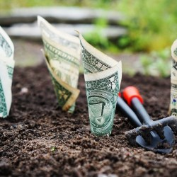 The Basic Impact of Basic Income and Impact Investing
