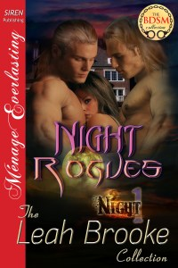 Night Rogues