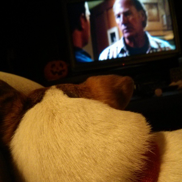 "Even this guy can't resist the emotional trappings of ""Parenthood."" #familysobbingtogether"