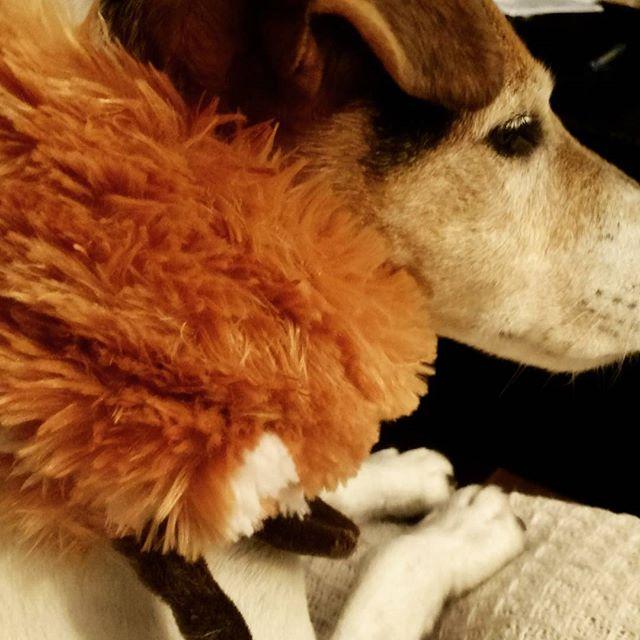 Fancy Friday. NBD - just rockin' my fox stole.