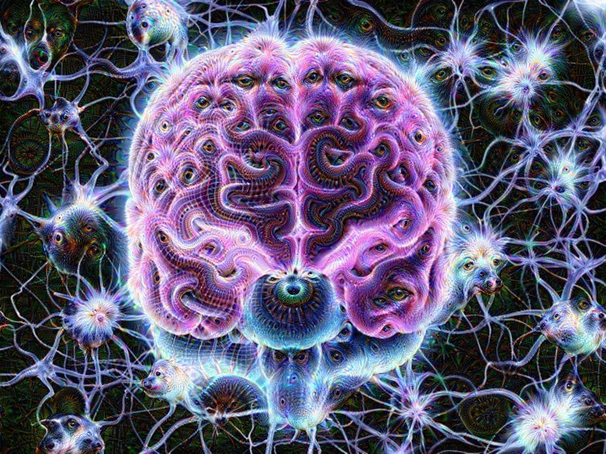 psychedelics expand your mind