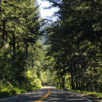 How To Road Trip as a Single Parent