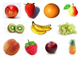 The new curriculum for Fruit Studies