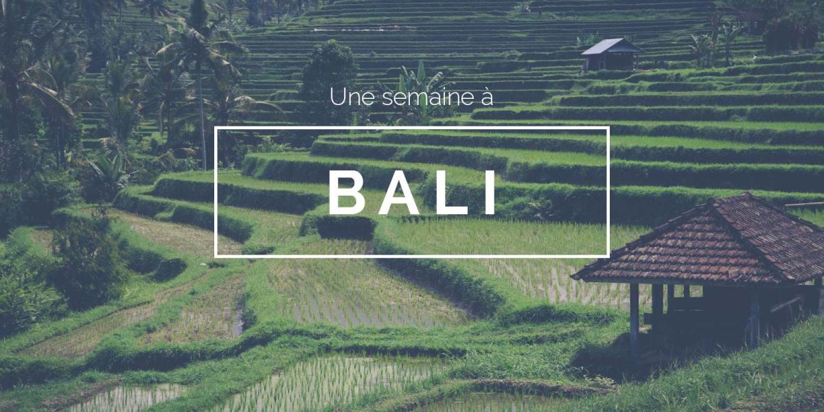 Visiter Bali - carte Bali