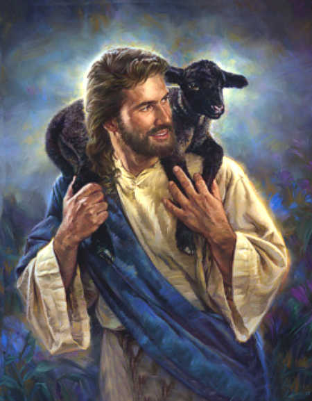 Jesus Sheep-11_4