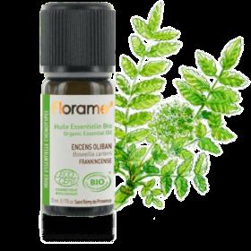 huile-essentielle-encens-oliban-biologique-i-557-330-png