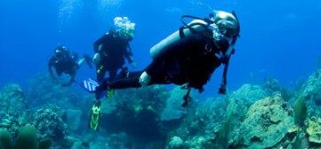scuba-diving-0808-lg-49574095