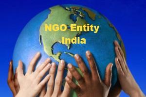 ngo-entity