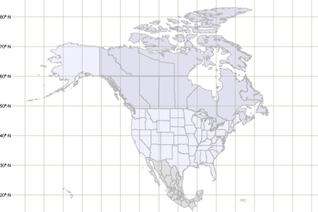 map of north america with laude and longitude grid