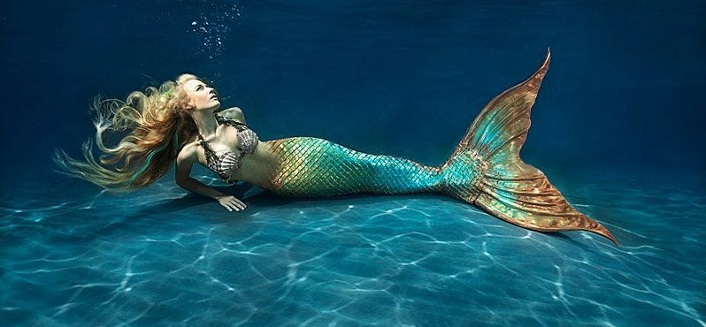 15 Myths and Legends  and facts  on Mermaids Search
