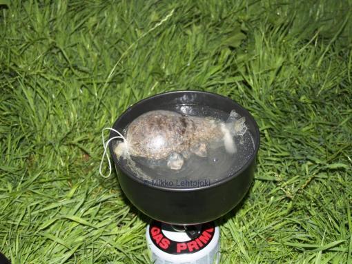 cooking haggis
