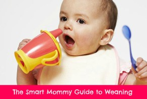 Smart Mommy guide to weaning