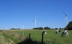 Le tarif d'achat éolien remit en cause par la Cour de justice européenne
