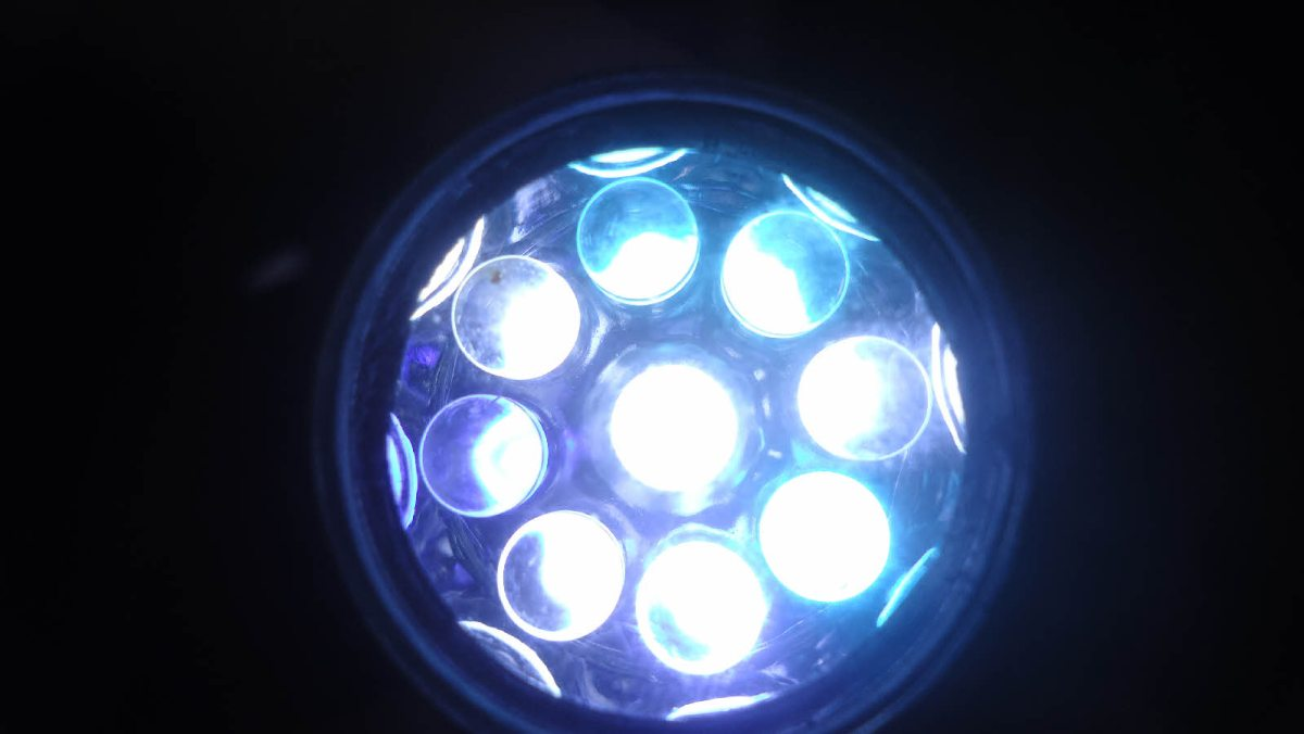 Un million d'ampoules LED seront distribuées par EDF à certains foyers français