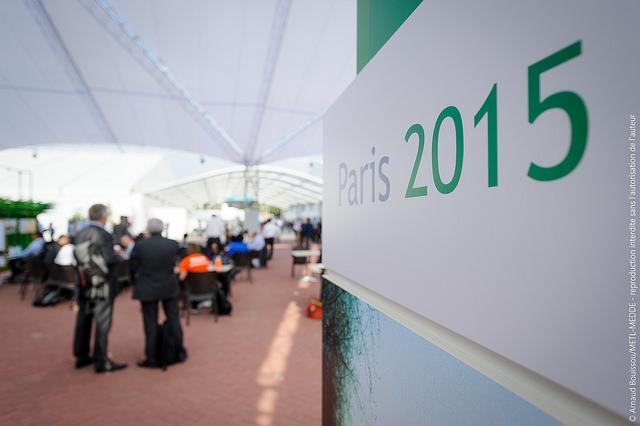 Le directeur général de l'IRENA appelle les États à concrétiser les engagements pris à la COP21