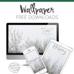 February Wallpaper Free Downloads