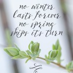 No Winter Lasts Forever- Spring Wallpapers are Here!
