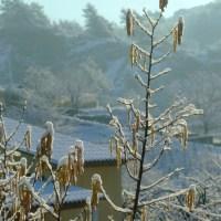 Contes sous la neige