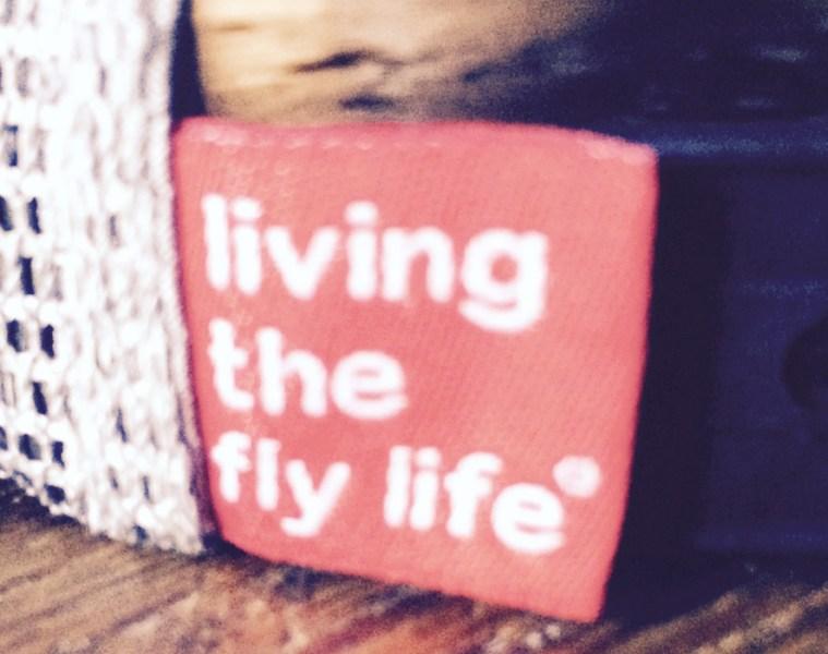flylife