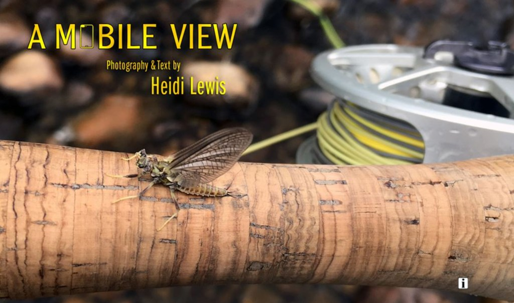 mobile-view