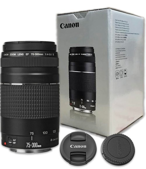 Medium Of Canon 70d Amazon