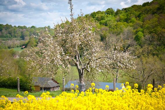 pommiers gîte cabane du pêcheur moyaux calvados normandie