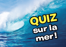 Quiz_Mer_Petit