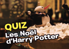 quiz_potterpetit
