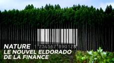 1000x550_video-nature-le-nouvel-eldorado-de-la-finance_pf